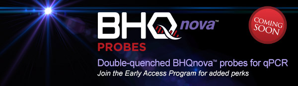 bhq-nova-early-access-email.jpg