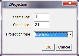 imagej-z-projection-options-window.png