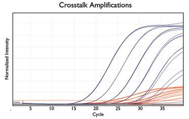 Crosstalk Amplifications