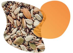 assorted-seeds